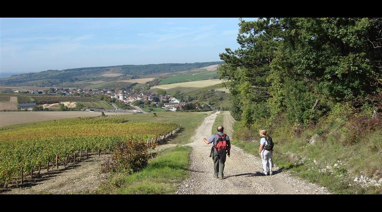 Les itinéraires de Grande Randonnée GR® de l'Yonne